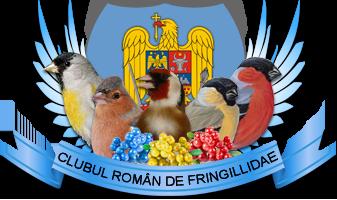 Clubul roman de fringilidae